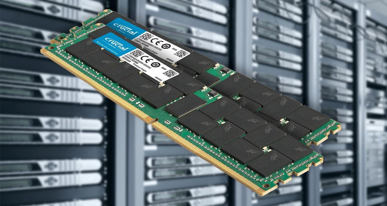 서버와 Curicial 서버 메모리.