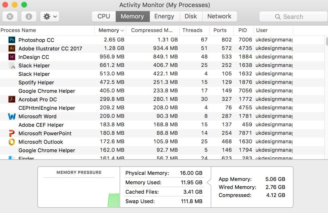 Mac의 활성 상태 보기(나의 프로세스) 윈도우 스크린샷